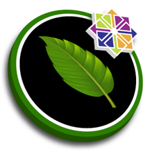 Linux CentOS 7.9 with Pure-FTPd Server.png