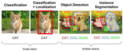 different forms of AI-powered image recognition