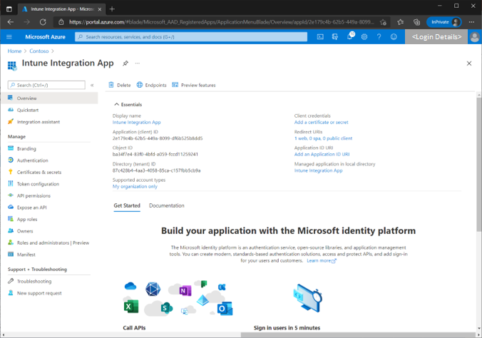 Figure 10 - Screenshot of an example Azure application and details under the Overview blade.
