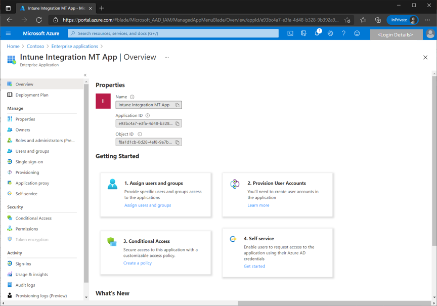 Figure 19 - Screenshot of an example Azure application and details under the Overview blade.
