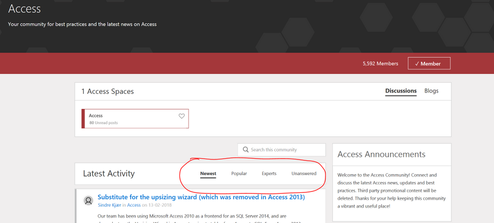 Filters on the Microsoft Access Category