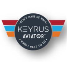 Keyrus Aviator MSP - 1-Week Assessment.png
