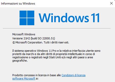 Windows Information (winver) Windows Version