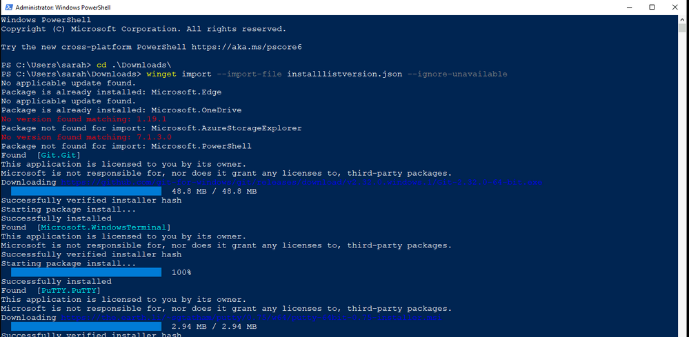 Windows Package Manager import command