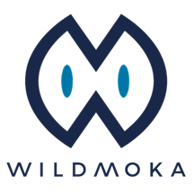 Wildmoka - Storybot.png