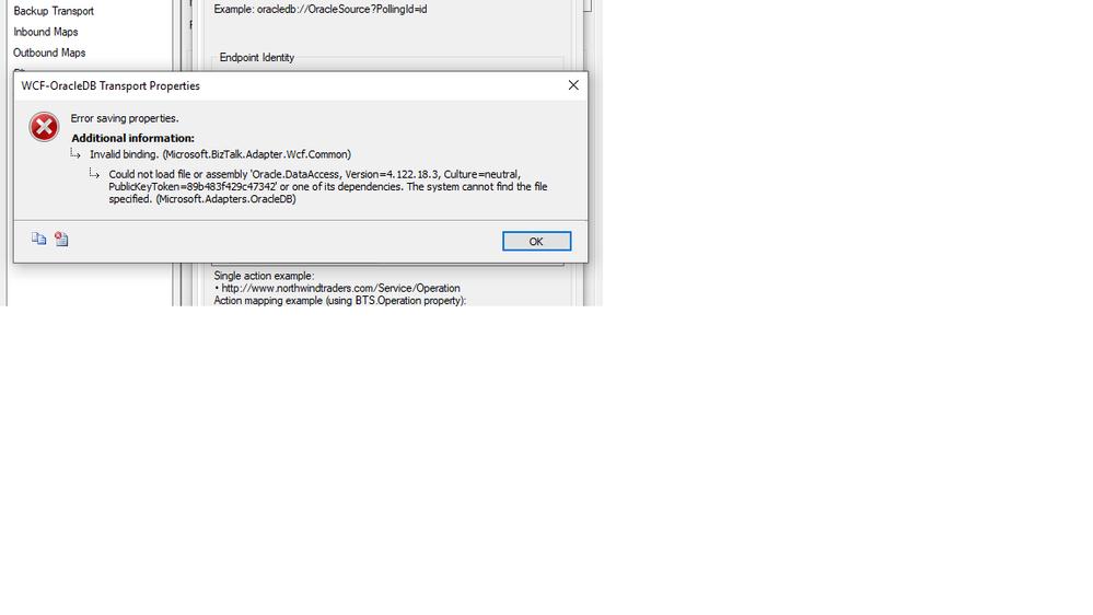 WCFOracleDB error.png