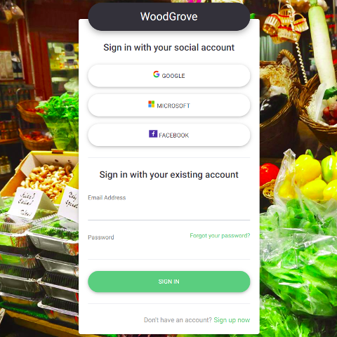 Customized sign in experience including Google, Facebook and Microsoft Account options