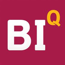 BI.Qube Meta-control for ETL.png