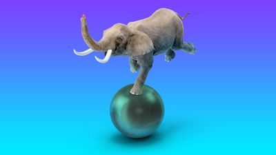 Elephant-balancing-on-a-ball-against-a-purple-and-teal-background-1920x1080.jpg