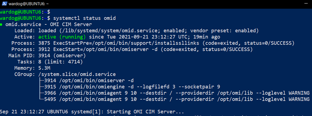 validate_omid_server_is_running.png