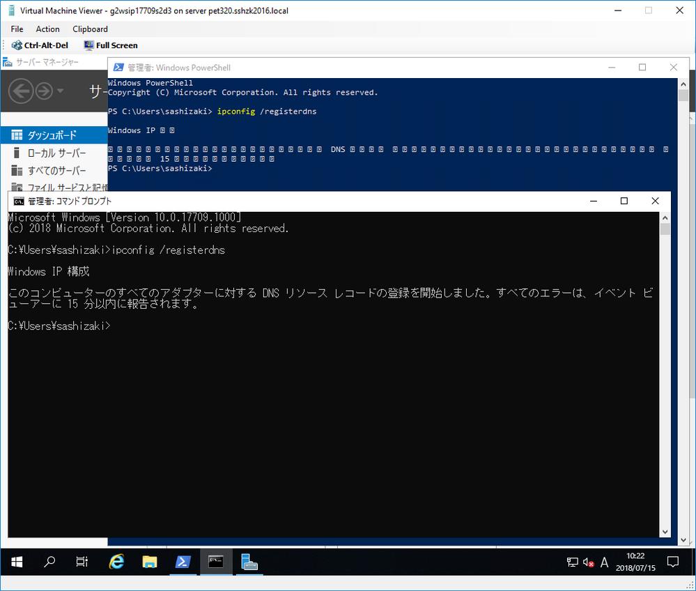 wsip17709_ja-jp_ipconfig-registerdns.png