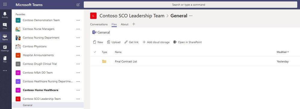 Contoso SCO Leadership Team