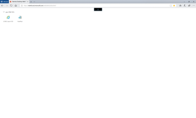 RDS web client screenshot.png