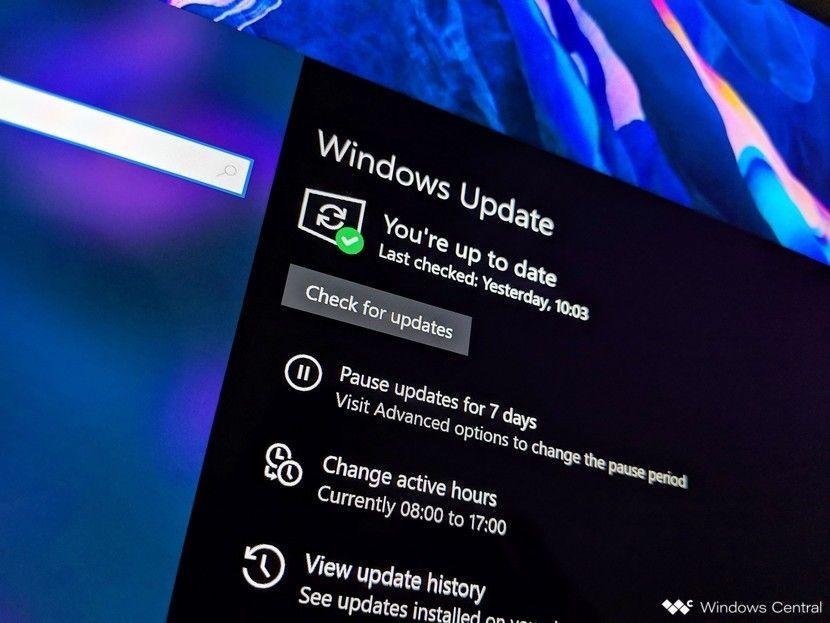 Sistem dukungan patch keamanan Windows.