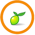 Limesurvey with Ubuntu 18.04 LTS.png