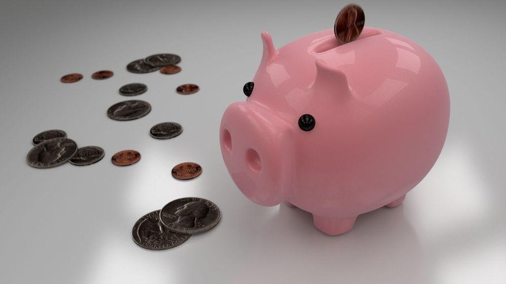 petit-cochon-tirelire-euros.jpg