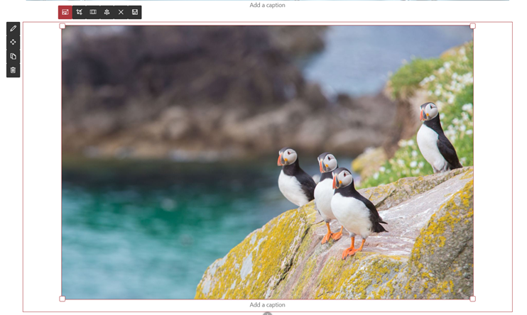 Resize an photo within the SharePoint Image web part; it retains the ratio of your choice across various screen sizes and resolutions.
