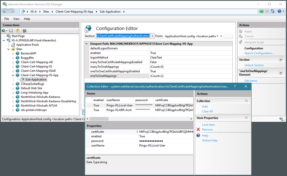 IIS client certificate mappings for authenticating the requests in the sub-application