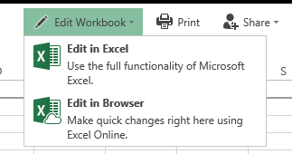 Worbook Options.PNG