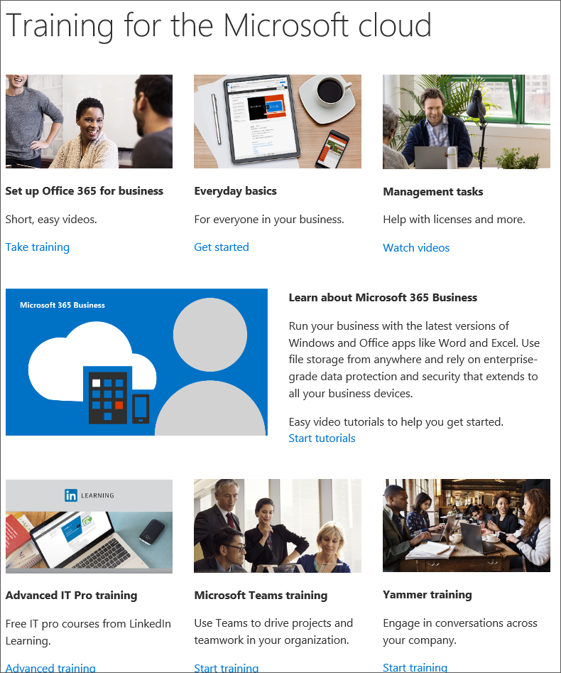 Office 365 and Microsoft 365 training for small business and