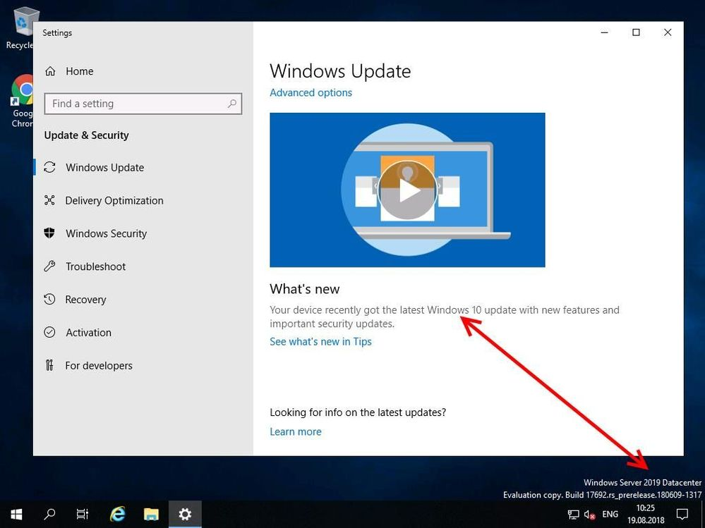 how to tell what version of windows server is installed