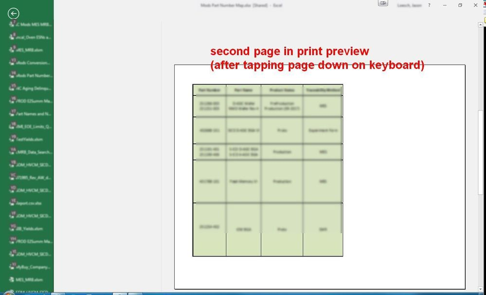 Excel 16 Print Preview Issue Second page.jpg