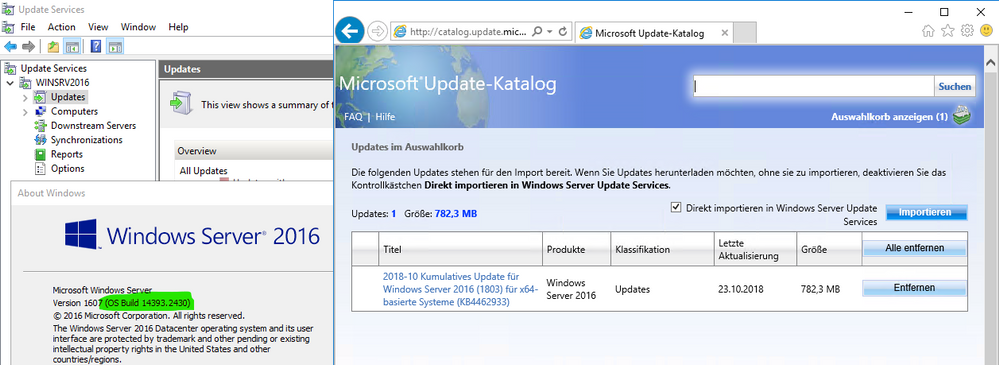 Known issue with importing updates from the Microsoft Update